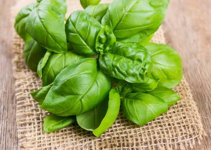 Basil for schizophrenia