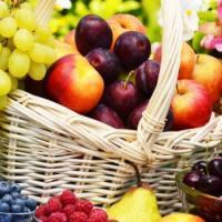 Les fruits tous lights 2