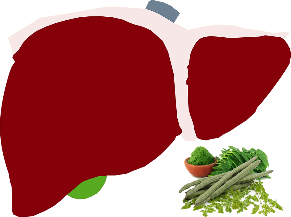 Moringa and hepatitis