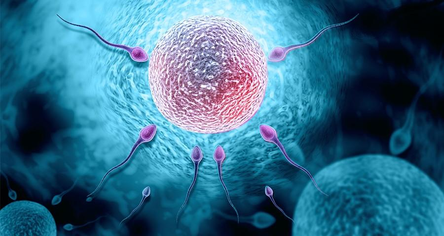 Preguntas fertilidad 900x480