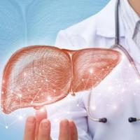 Symptomes prevention 7 choses a savoir sur l hepatite e 1