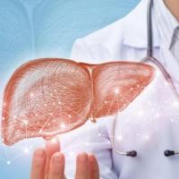 Symptomes prevention 7 choses a savoir sur l hepatite e 1