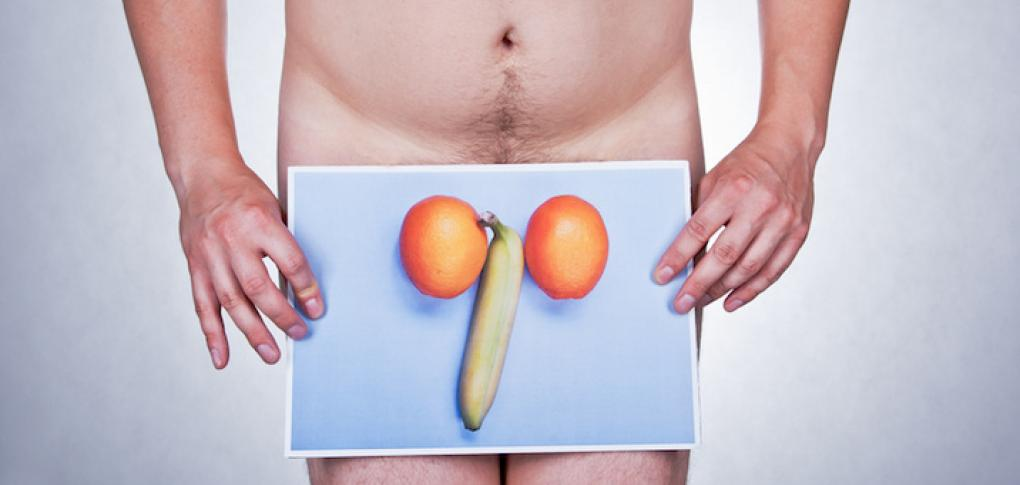 Testicules sexe homme